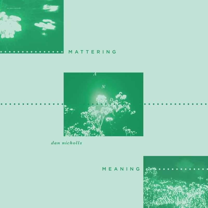 Dan Nicholls/MATTERING AND MEANING LP