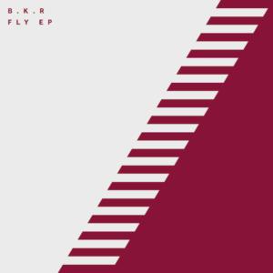 """B.K.R/FLY EP 12"""""""