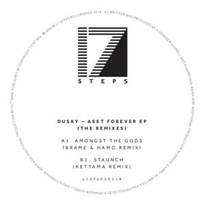 """Dusky/ASET FOREVER: THE REMIXES -RSD 12"""""""