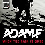 Adam F/WHEN THE RAIN IS GONE 12""