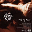 "Low Budget Soul/FILLS MY HEART 12"""
