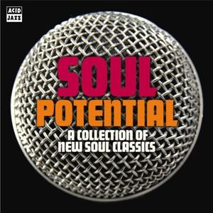 Various/SOUL POTENTIAL CD