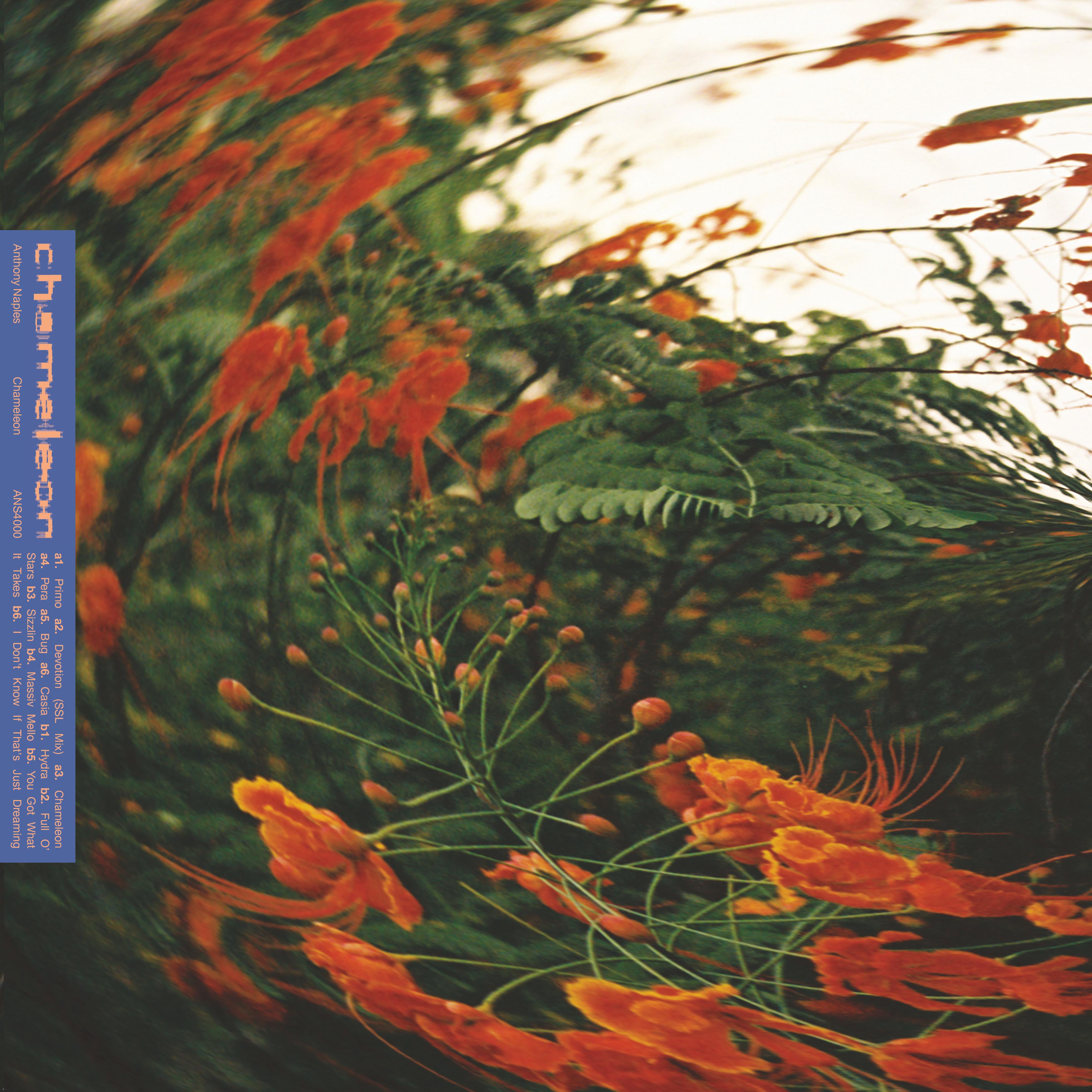 Anthony Naples/CHAMELEON LP