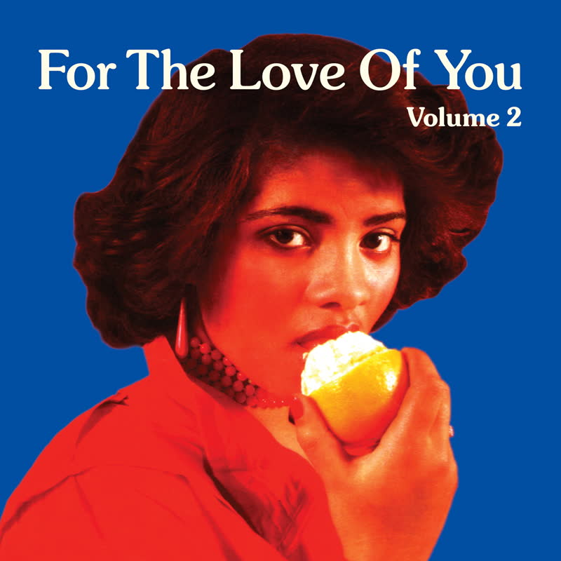 Various/FOR THE LOVE OF YOU VOL 2 DLP