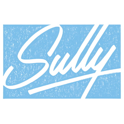 Sully/FLOCK 12""