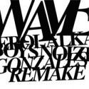 Erol Alkan/WAVES-GONZALES REWORKS 10""