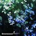 Various/BROWNSWOOD ELECTRIC CD