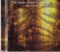 FSOL/PAPUA NEW GUINEA TRANSLATIONS CD