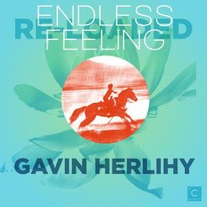 "Gavin Herlihy/ENDLESS FEELING REMIX 12"""