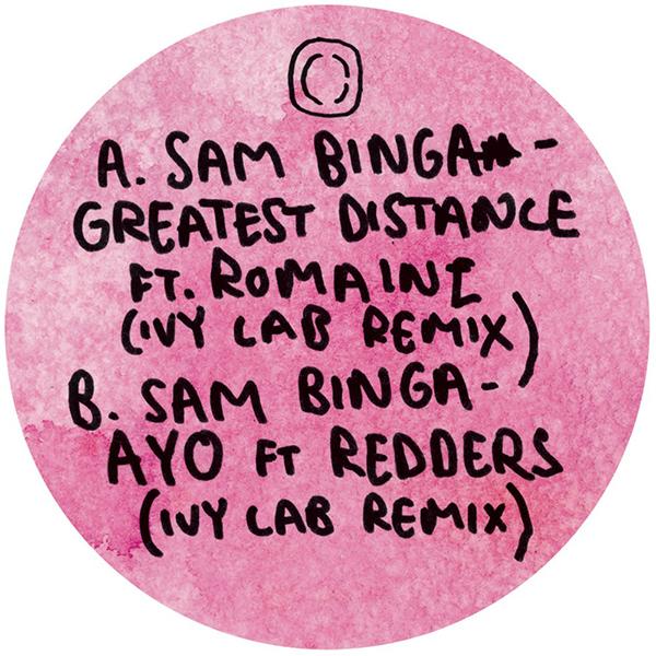 "Sam Binga/WASTED DAYS REMIXES 10"""