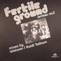 "Fertile Ground/RMXS 2-TAKE ME HIGHER 12"""