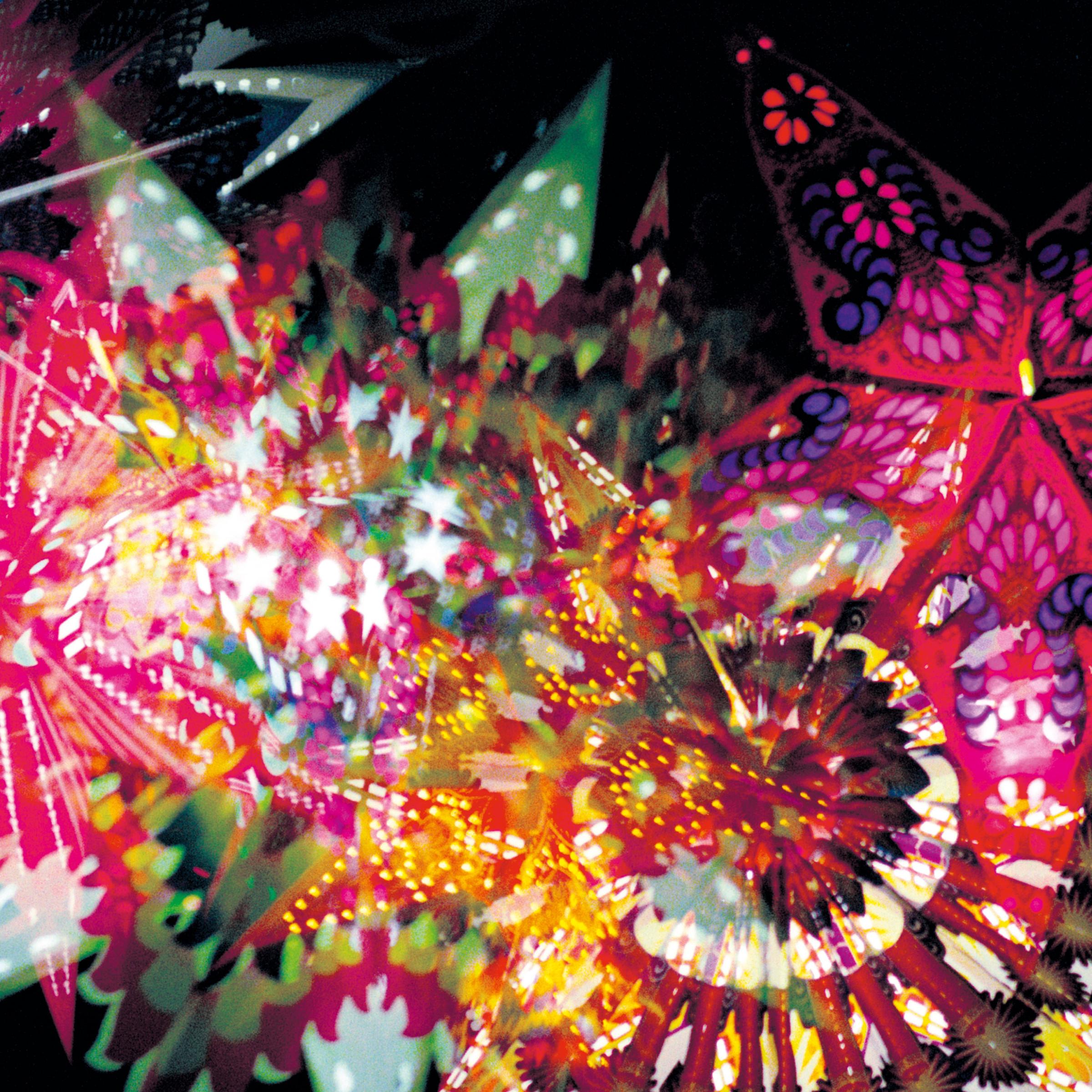 Caribou Vibration Ens/CVE LIVE 2011 LP