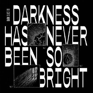Various/DARKNESS HAS NEVER BEEN... 12""