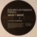 Bob Sinclar/WHAT I WANT 1-SIDED 12""