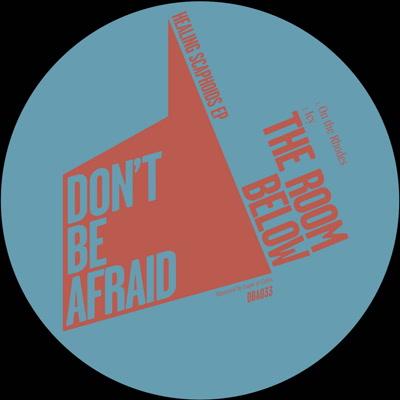 """Room Below/HEALING SCAPHOIDS EP 12"""""""