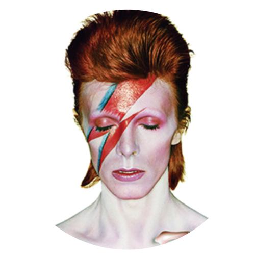 David Bowie/ALADDIN SANE SLIPMAT