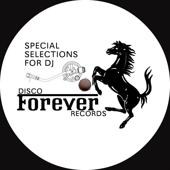 Disco Invasion/SPECIAL SELECTION 12""