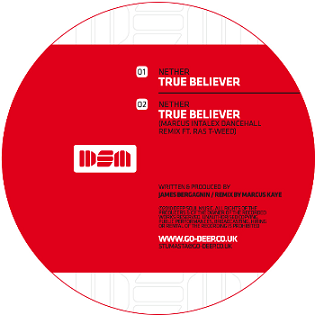 Nether/TRUE BELIEVER-MARCUS INTALEX 12""