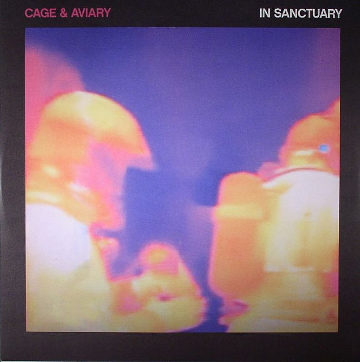 """Cage & Aviary/IN SANCTUARY 12"""""""