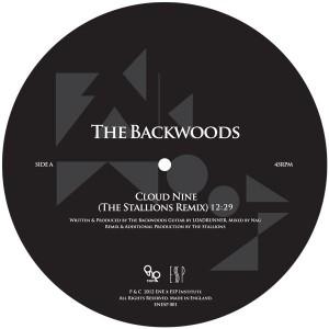 "Backwoods/CLOUD NINE REMIXES 12"""