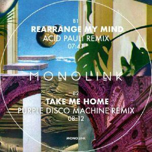"""Monolink/REMIXES PT 2 12"""""""