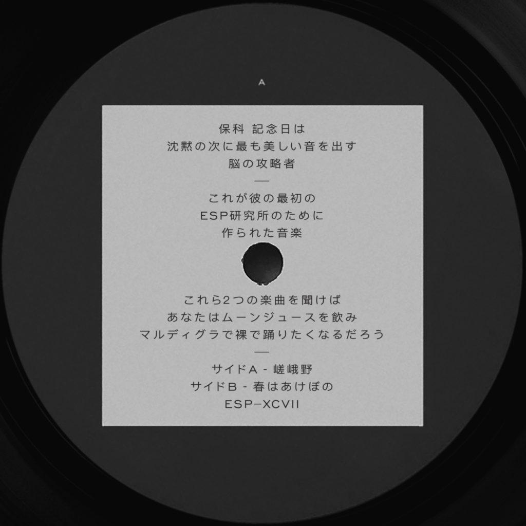 "Hoshina Anniversary/SAGANO 12"""