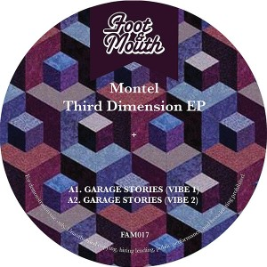Montel/THIRD DIMENSION 12""