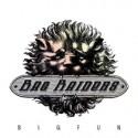 "Bag Raiders/BIG FUN EP 12"""