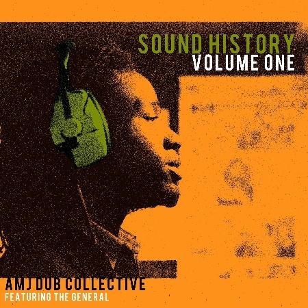 "Amj Dub Collective/SOUND HISTORY V1 12"""