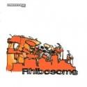 Rhibosome/RHIBOSOME CD