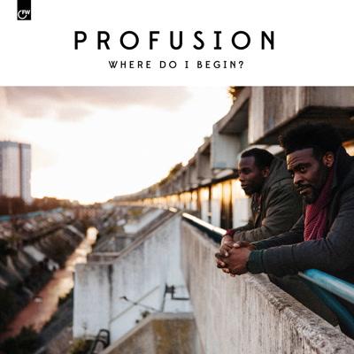 Profusion/WHERE DO I BEGIN? LP