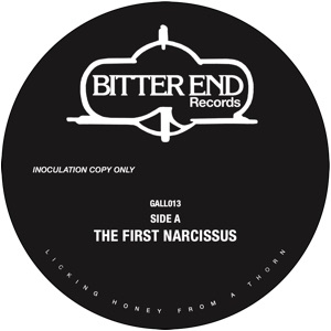 DJ Parrot/THE FIRST NARCISSUS 12""