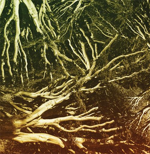 "Various/GOTTWAX EP 2 12"""