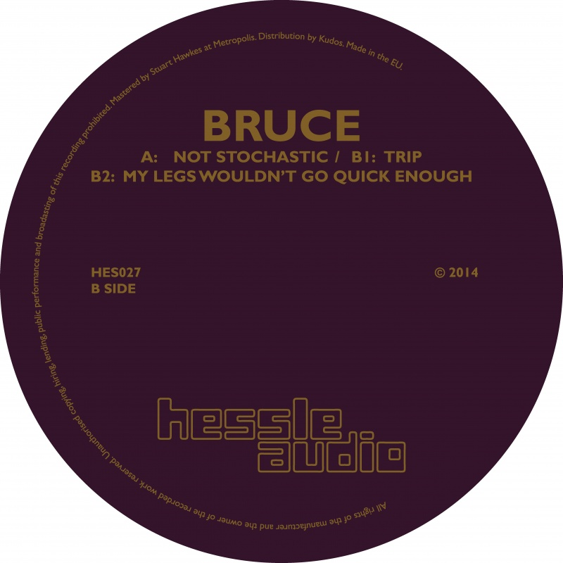 Bruce/NOT STOCHASTIC 12""