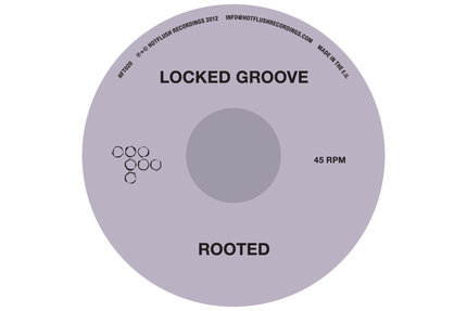 Locked Groove/ROOTED 12""