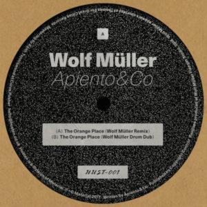 "Apiento & Co/WOLF MULLER REMIXES 12"""