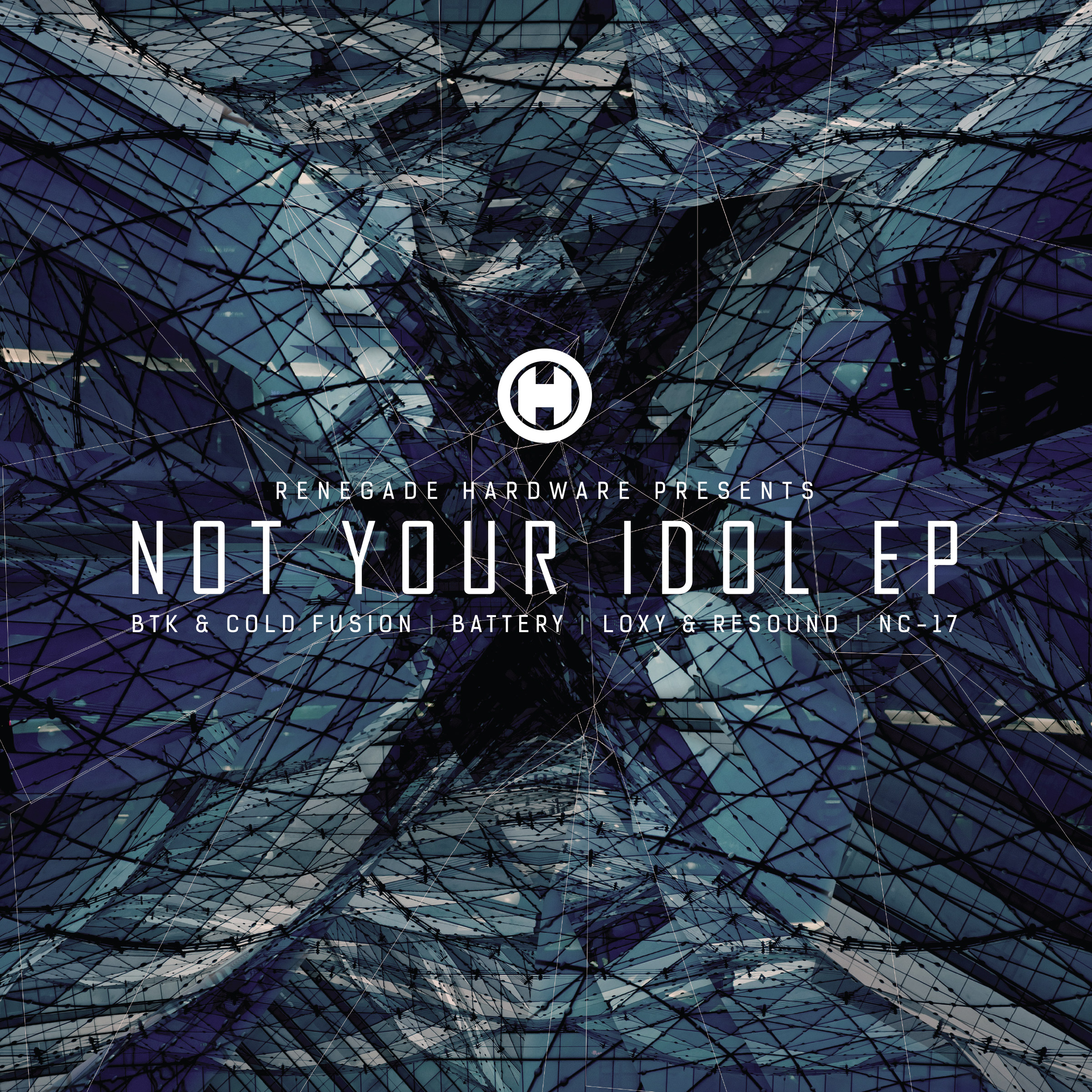 Various/NOT YOUR IDOL EP D12""