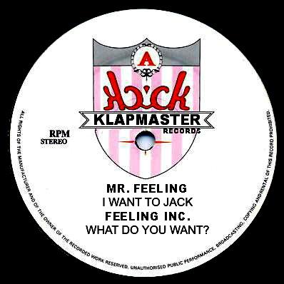 "Mr. Feeling/HOUSE IS MR. FEELING LP+12"""