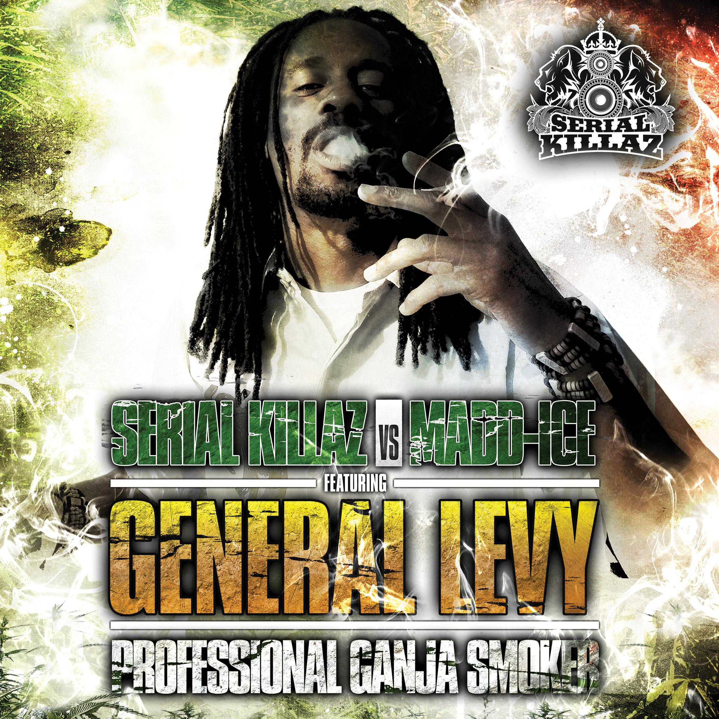 "General Levy/PROFESSIONAL GANJA RMX 12"""