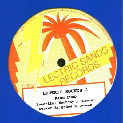 """Zoovox/LECTRIC SOUNDS VOL. 2 12"""""""