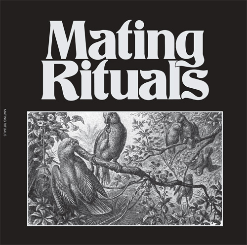 "Martin Hayes/MATING THEME 7"""