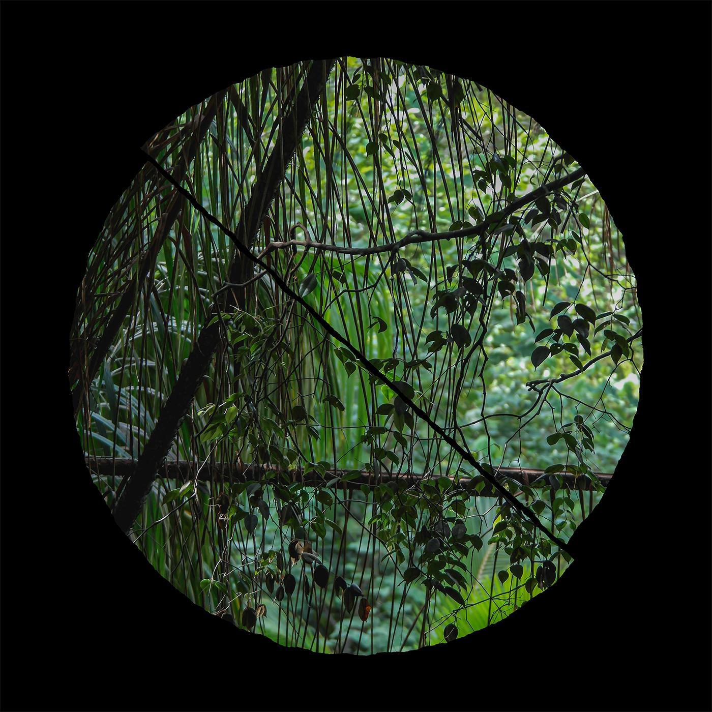 Llyr/BIOME LP