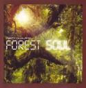 Misty Oldland/FOREST SOUL CD