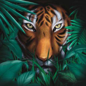 Vision Of Panorama/UNIQUE TIGER LP