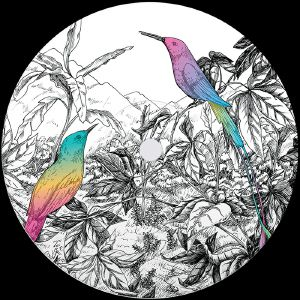 Vision Of Panorama/TWO BIRDS 12""