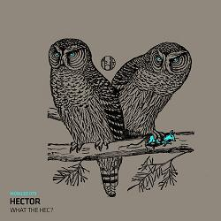 Hector/WHAT THE HEC? 12""