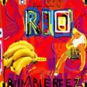 "Bumblebeez/RIO REMIX 12"""
