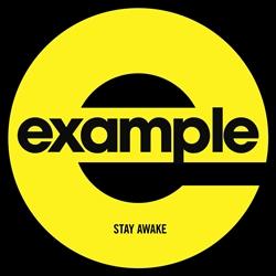 "Example/STAY AWAKE (ALVIN RISK RMX) 12"""