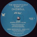 Various/MAGNIFICENT SAMPLER EP 12""