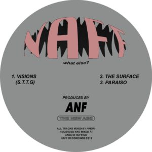 """ANF/VISIONS 12"""""""